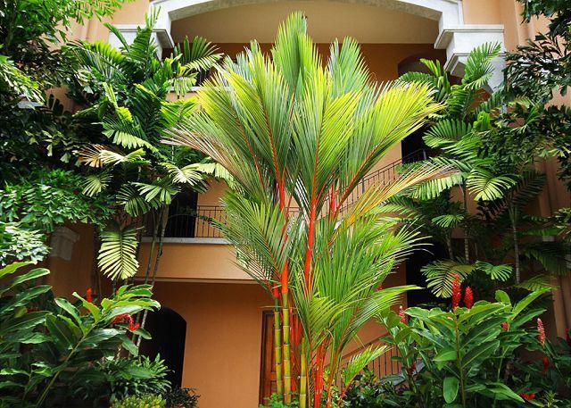 Peaceful Condominium - Veranda 3E - Image 1 - Herradura - rentals