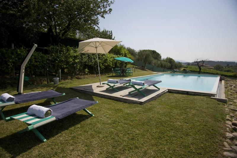 Swimming Pool - LOVELY BARN UP TO 9 WITH WIFI, AC AND PRIVATE POOL - Lucca - rentals