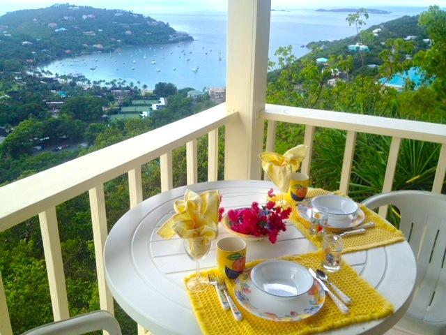 "Tropical Orchid VIEW  Your Patio - Sale Snow- Hot Tub""JUST FOR TWO"" spectacular Views - Cruz Bay - rentals"