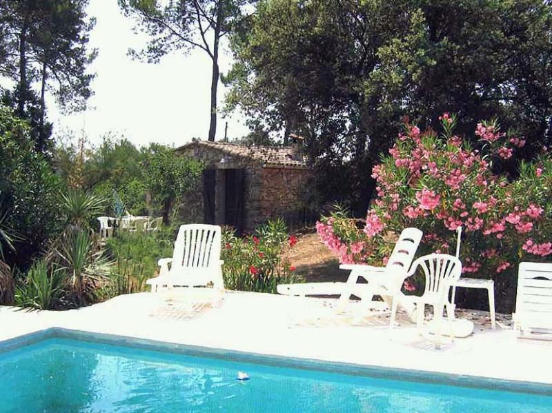 The Cabanon and the swimming-pool - L'Eucalyptus B & B Provencal Cabanon - Les Arcs sur Argens - rentals