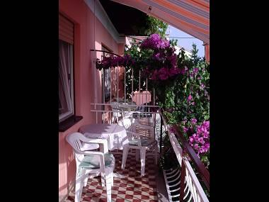 A1(6): covered terrace - 01918ZADA A1(6) - Zadar - Zadar - rentals