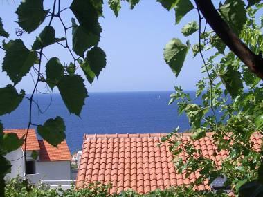 A4(4+2): sea view - 2176 A4(4+2) - Ivan Dolac - Ivan Dolac - rentals