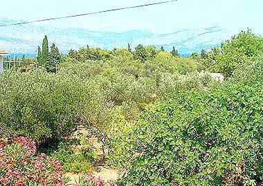 A1(8): view - 00501SUPE  A1(8) - Supetar - Supetar - rentals