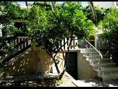 house - 04101BOL SA1(2) - Bol - Bol - rentals