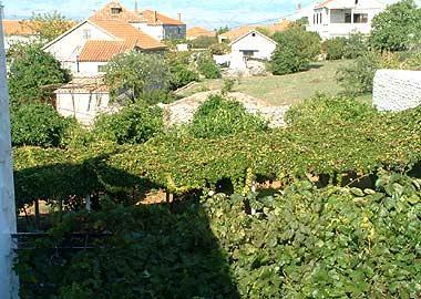 A1(2+2): terrace view - 00901SUTI  A1(2+2) - Sutivan - Sutivan - rentals