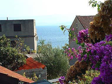 A1(3+1): terrace view - 02101BOL A1(3+1) - Bol - Bol - rentals