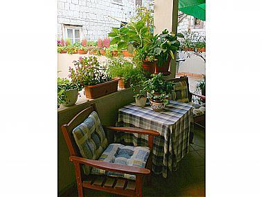 garden terrace (house and surroundings) - 00902SPLI SA2(2) - Split - Split - rentals