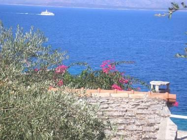 sea view (house and surroundings) - 2389 H(3+1) - Cove Stiniva (Vela Luka) - Cove Stiniva (Vela Luka) - rentals
