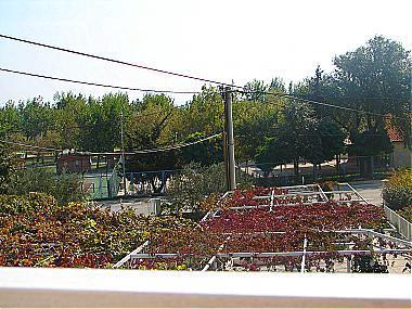 A2(3): terrace view - 00509DUCE A2(3) - Duce - Duce - rentals