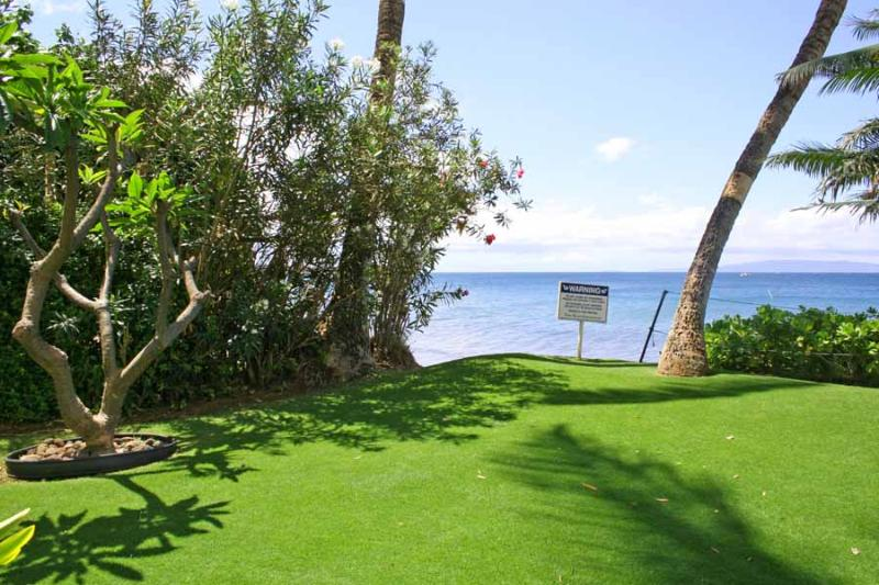 KIHEI BEACH, #110 - Image 1 - Kihei - rentals