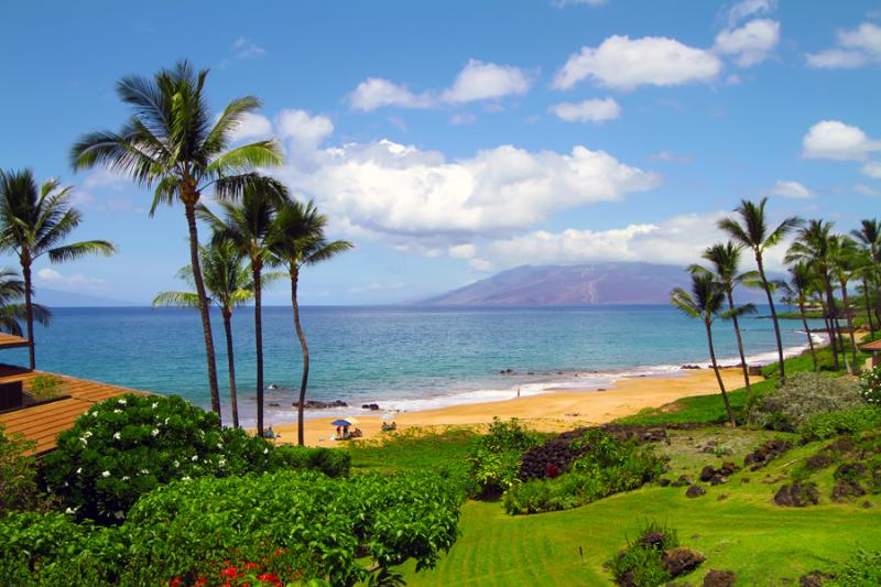 MAKENA SURF RESORT, #C-103 - Image 1 - Wailea - rentals