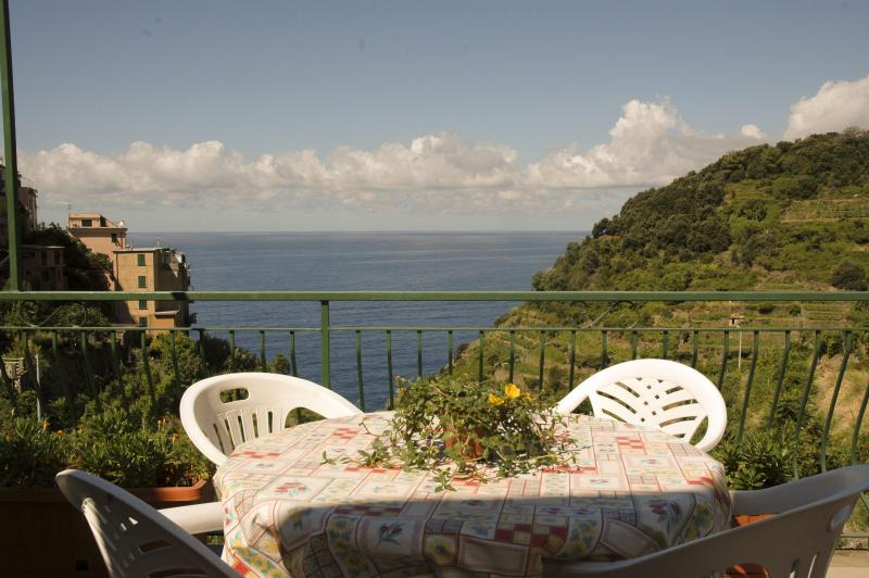 view from the terrace - appartamento cicci - Corniglia - rentals