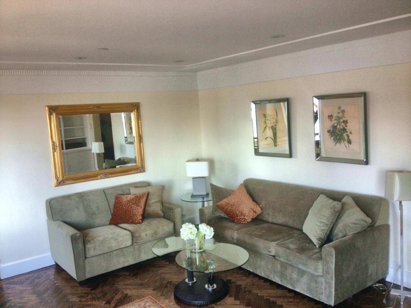Living room with very comfortable queen sleeper sofa - Luxury 1 Bedroom 1 Bath Condo Central Park South - New York City - rentals