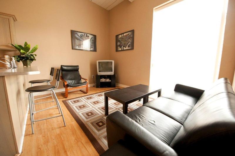Living Area - Superior 2 - Niagara Falls - rentals