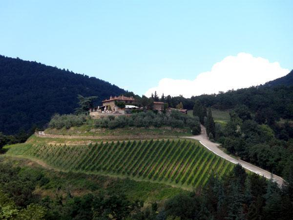 the view from the balcony - Our apartment in Borgo di Gaiole, Chianti - Gaiole in Chianti - rentals