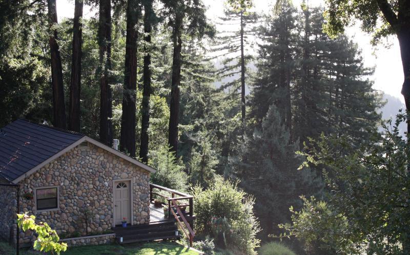 Dragonfly Cottage - Santa Cruz Mountains Dragonfly Cottage Rental - Corralitos - rentals