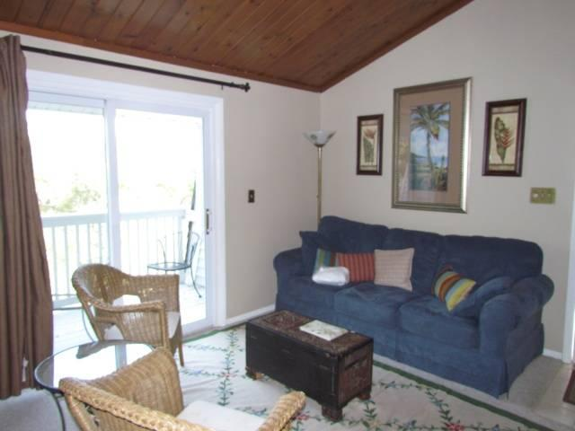 254 Driftwood Villa - Wyndham Ocean Ridge - Image 1 - Edisto Beach - rentals