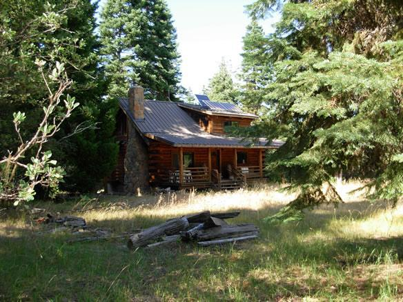 Cabin in June - Singing Birds Cabin - Ashland - rentals