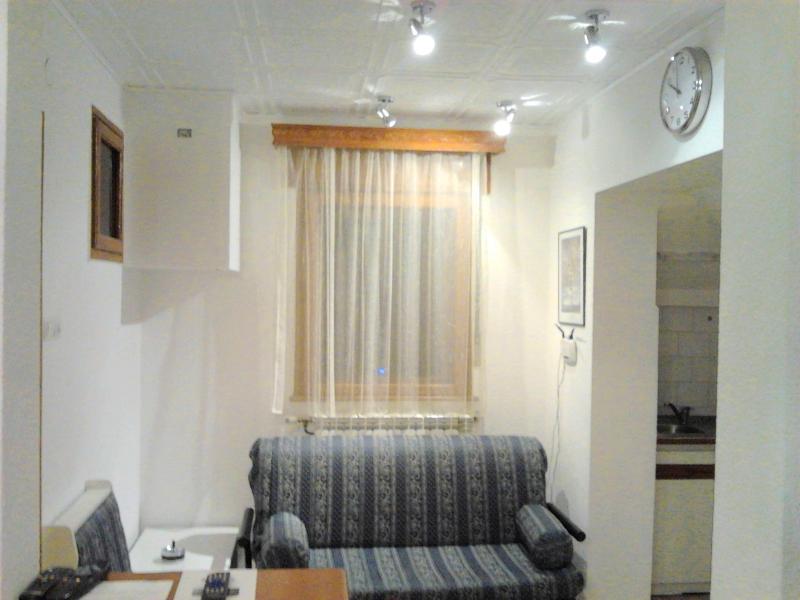 2 Rooms Amzei - RomPromo Plus Accommodation historical Bucharest - Bucharest - rentals