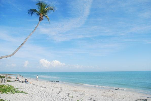 The beach in front of our condo - Best of the Beach! Island Beach Club 230D - Sanibel Island - rentals