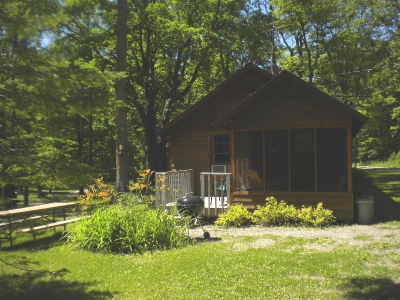 Summer Outside View - Little Cabins in the Woods on the Lake  #1 - Deer River - rentals