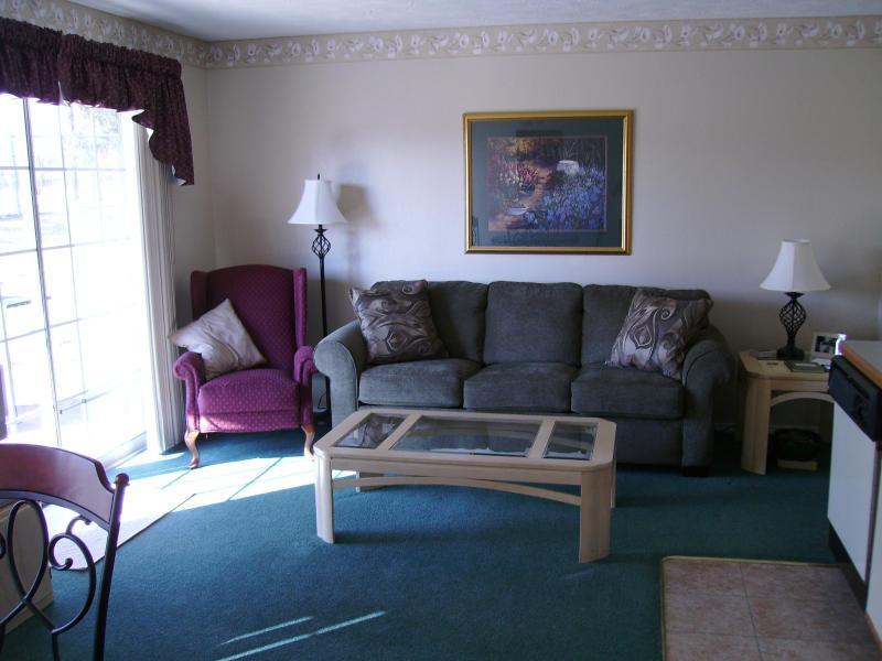 Living room - Branson Condo-Quiet, Walkin-Walkout, Wi-Fi - Branson - rentals
