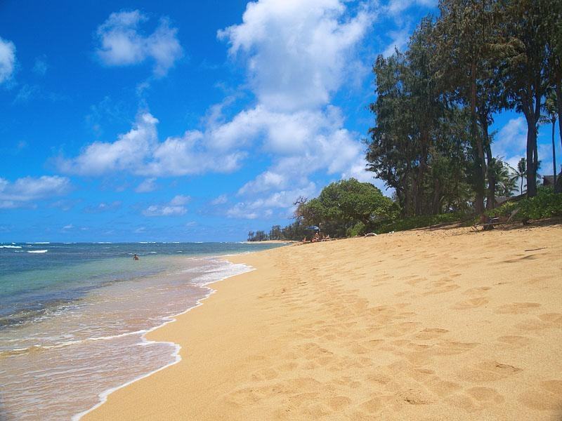 Our secluded beach is only a few paces from suite 131, sleep to the soothing sound of the ocean surf - Islander on the Beach Oceanfront Condo Kauai - Kapaa - rentals
