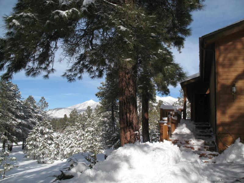 Come back soon! Front door and beginning of wraparound deck - Dream Cabin, Unbeatable Views, Privacy & Ambience - Flagstaff - rentals