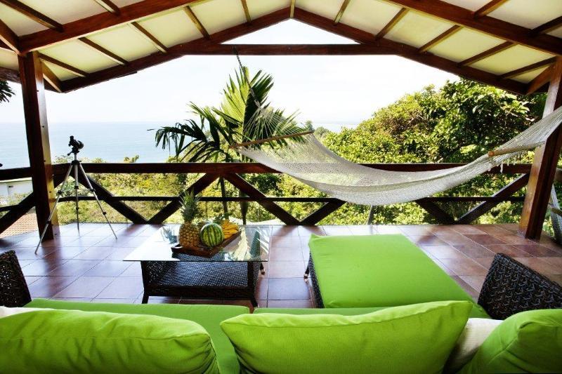 Fantastic ocean views - Ocean Views - Wildlife - Tulemar Beach - 4 Pools - Manuel Antonio National Park - rentals