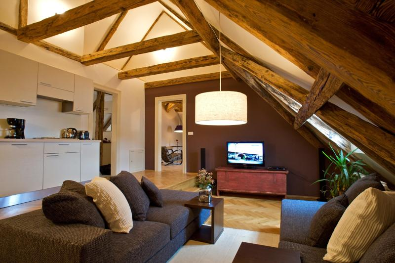 Enchanting Apartment - Enchanting One-Bedroom Apartment - Prague - rentals