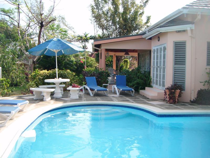 Awesome heart shaped pool - Fanta Sea Villa - Runaway Bay - rentals
