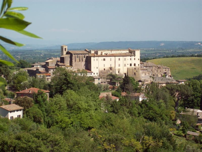 The village of Roccalvecce,the house sits below the right side of the  castle above the gardens. - Hilltop Village Home, 1 hr north of Rome - Roccalvecce - rentals