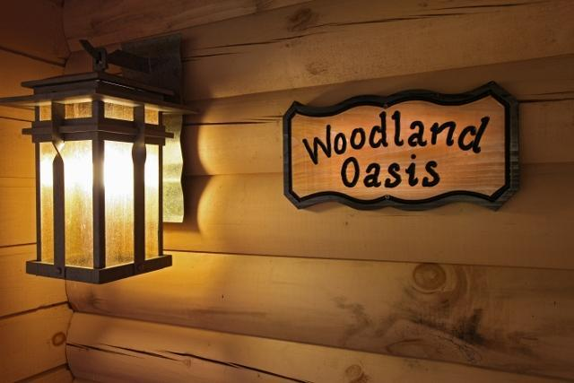 Welcome To Our Mountain Home - WOODLAND OASIS--The Name Says It All! - Pigeon Forge - rentals