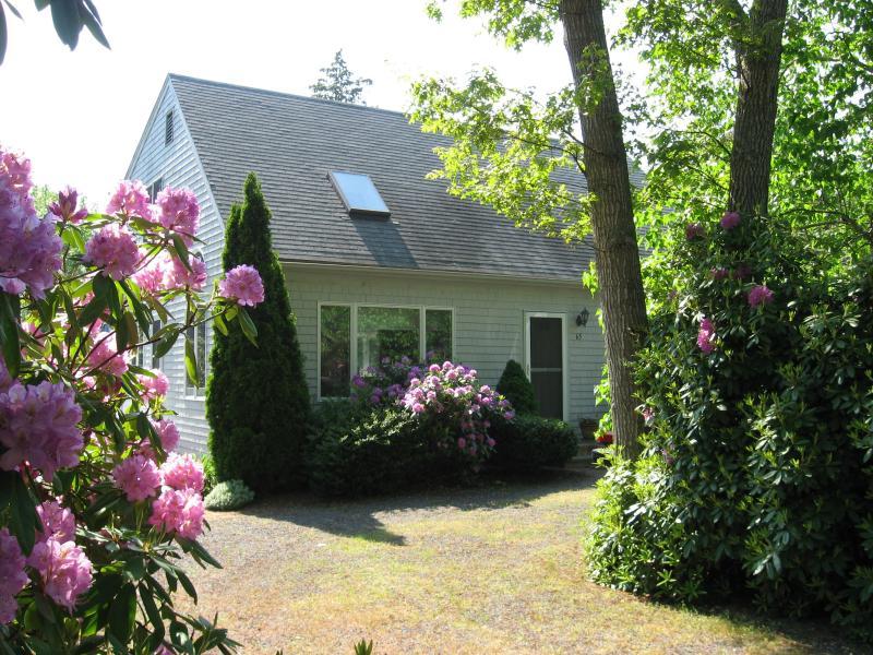 Cape House - Beautiful Modern Cape Near Craigville Beach - West Hyannisport - rentals