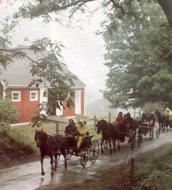 Carriage House Traffic - Woodstock Carriage House! - Woodstock - rentals