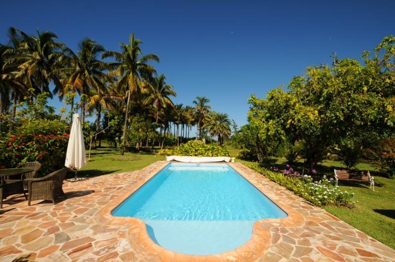 pool of villa la cocoteraie - Villa La Cocoteraie - Le Morne - rentals