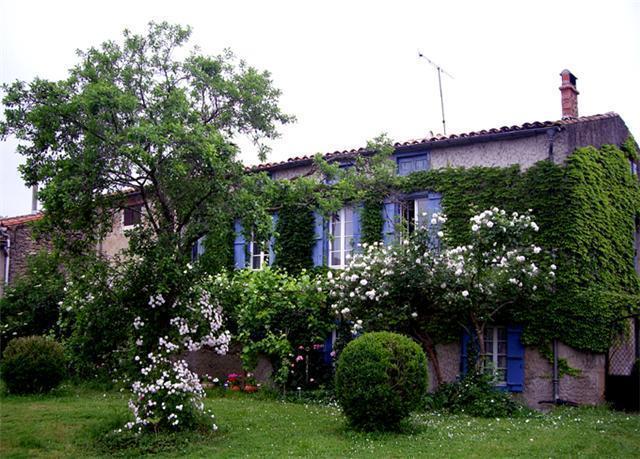 June 2010 roses galore - 'Le Village'  Maison de Maitre - Aude - rentals