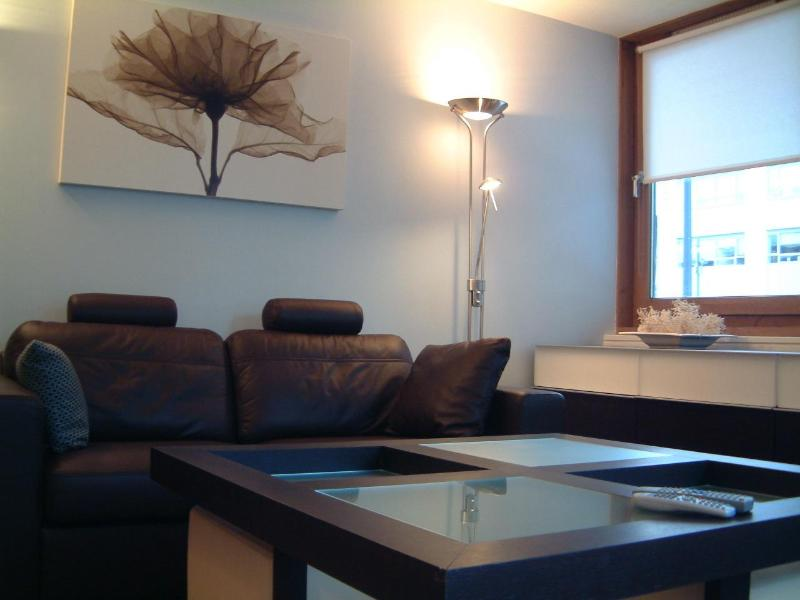 Lounge - Dublin Luxury City Pad sleeps 6 - Dublin - rentals