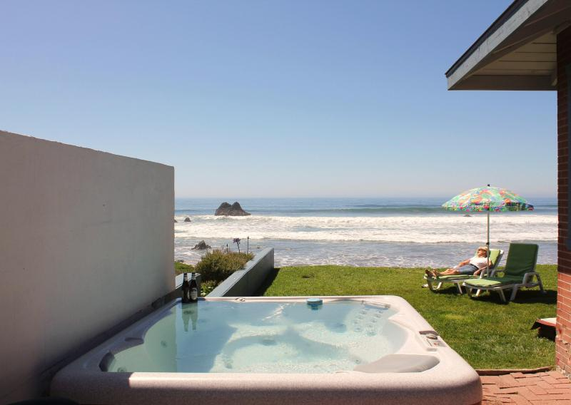view from hot tub - Cayucos OCEAN FRONT Home FREE INTERNET - Cayucos - rentals