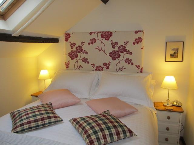Red Kite Cottage a luxury 4* country hideaway - Image 1 - Lampeter - rentals