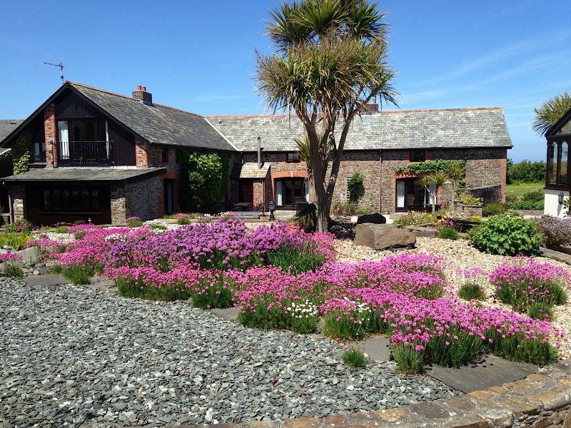 Thrift and Chives running riot in courtyard - Clematis Cottage, Ocean Views in North Devon - Hartland - rentals
