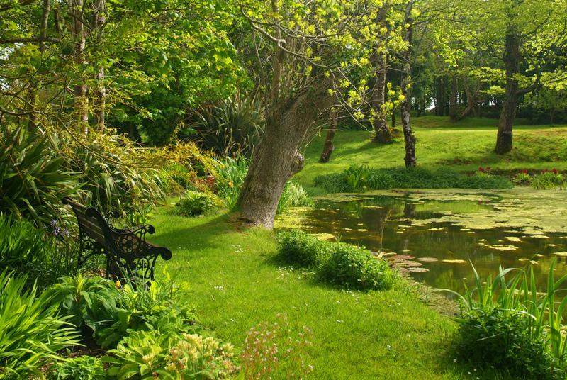 THE LILLY POND AT DOWNE - Wistaria Cottage, Hartland, North Devon - Hartland - rentals