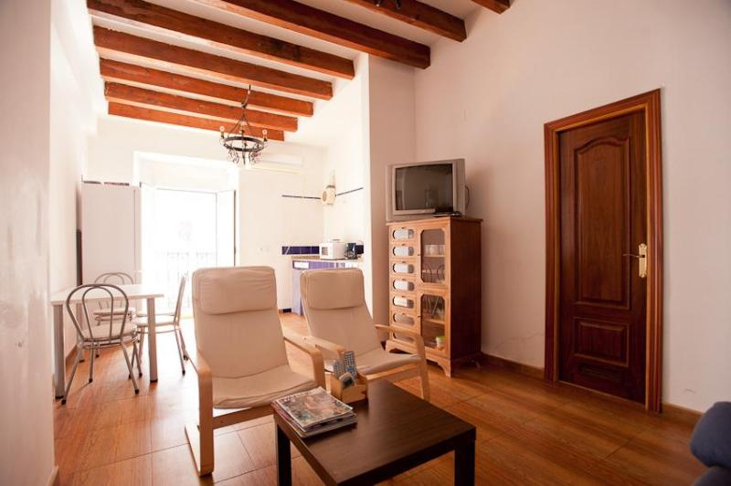 Deluxe 2Bedroom Apartment-Sevilla Old city Center - Image 1 - Seville - rentals