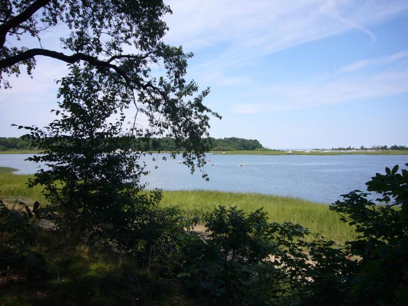 L1010302.JPG - We Think it's Better Than the Hamptons - Kings Park - rentals