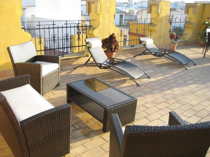 Shared roof terrace. - Cozy apartment in Seville - Seville - rentals