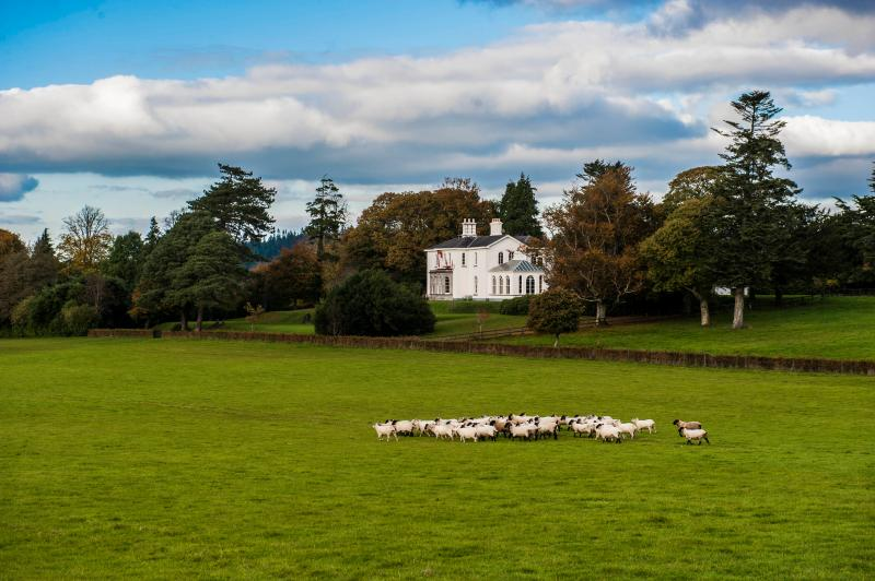 Coolclogher House Killarney Ireland - Luxury Manor in Private/Estate/Golf/walking/Horse - Killarney - rentals