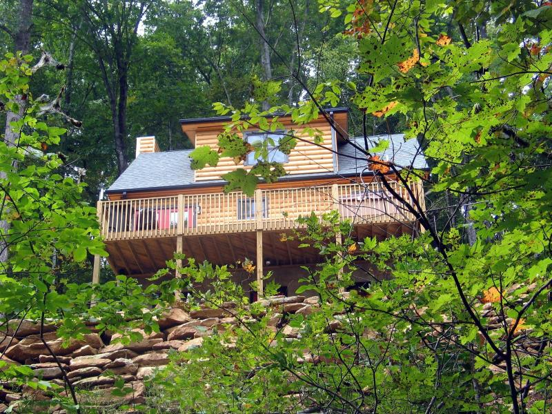 cabin from rd - Black Beary Cabin - Hendersonville - rentals