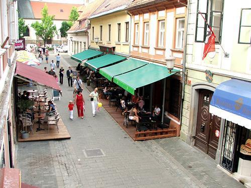 DSCF8085 b - Maribor Guba Apartment - Maribor - rentals