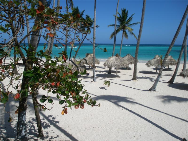 Spacious 2 Bedroom Near Beach & Shopping - Image 1 - Dominican Republic - rentals