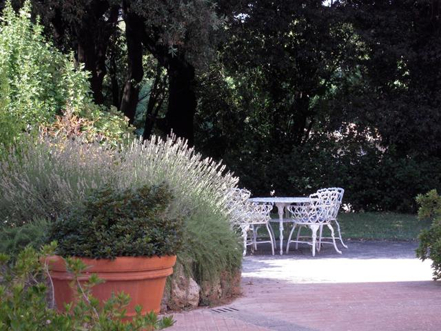 Siena Vacation Rental at Costafabbri - Image 1 - Siena - rentals